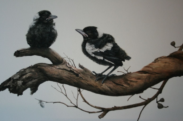 Title: Magpie Fledglings