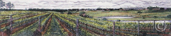 Title: Passing clouds over the vines