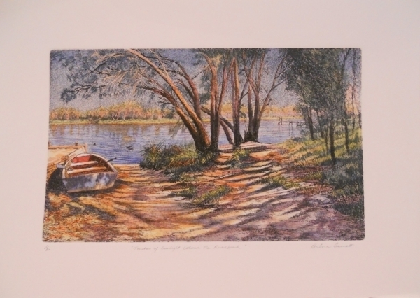 Title: Touches of sunlight colour the riverbank