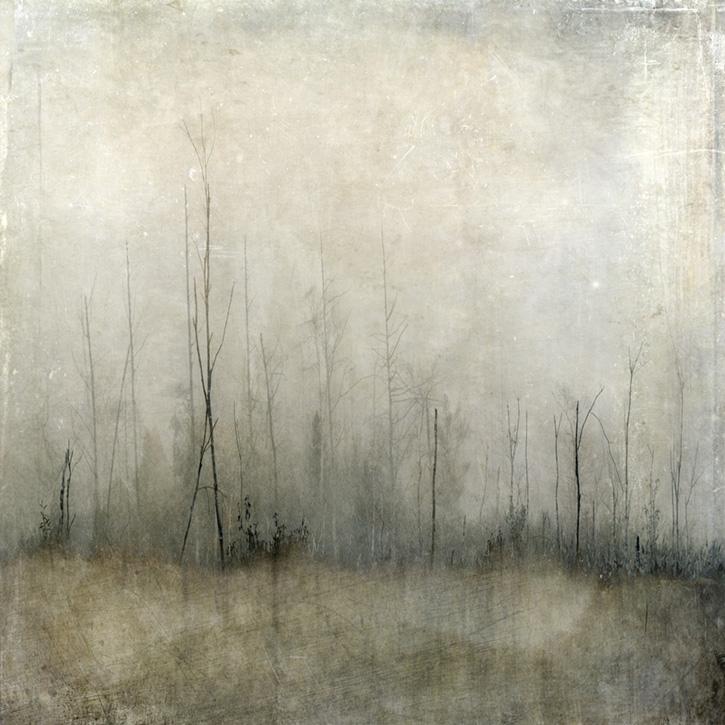 """""""fog at blackman field"""""""