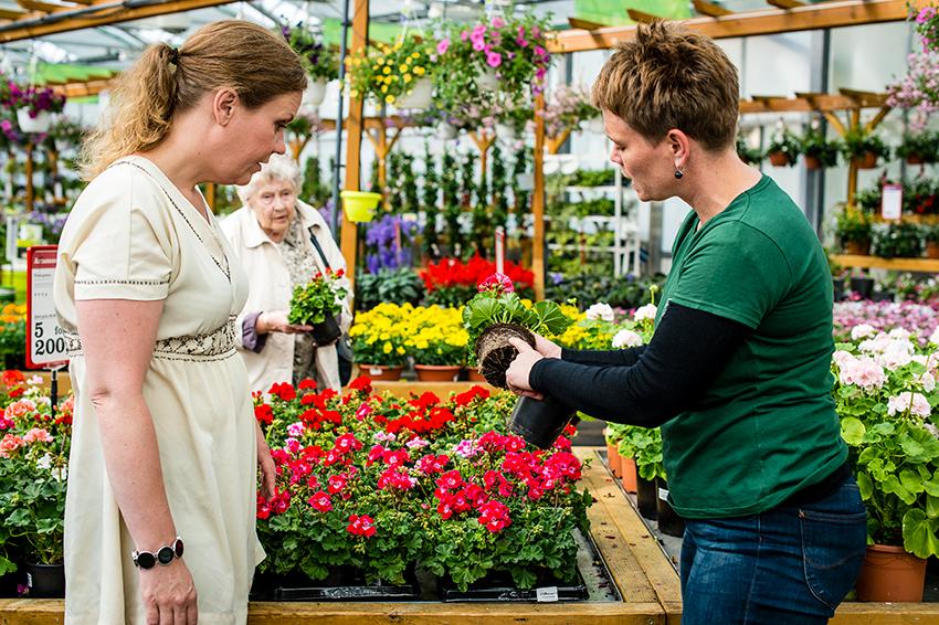 Mer jord. Kjøper du planter i butikken, enten det gjelder blomster eller krydderurter: Pott om ! Fjerner du potta fra kjøpeplantene ser du ofte at de hvite røttene har det trangt. Skap god plass i store potter med rikelig god jord. God jord, det kan ikke bli sagt ofte nok. God jord.