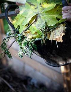 Blader, kvist og rusk kan bli til næringsrik kompostjord.