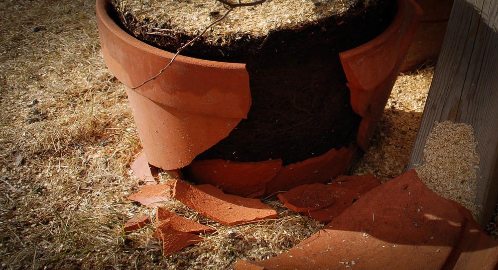 Tøm pottene før vinteren så sprekker de ikke.