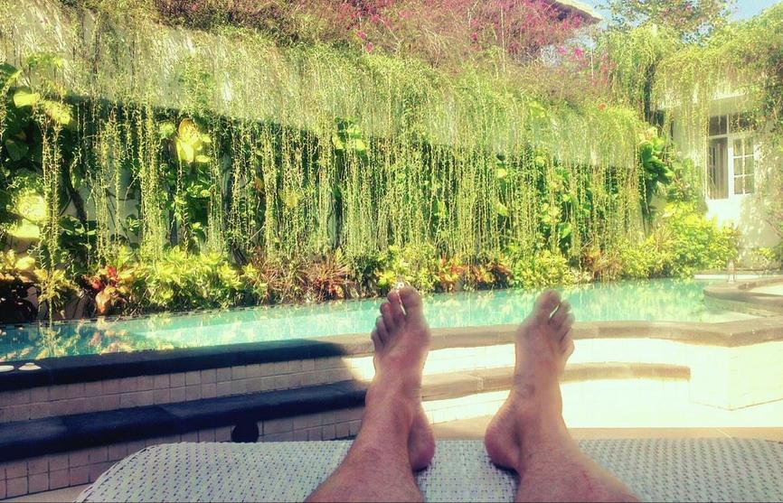 Det trengs en godporsjon tålmodighet for å dyrke kiwi, men du trenger ikke å dra til Bali for å gjøre det.  Foto   Simen Røe
