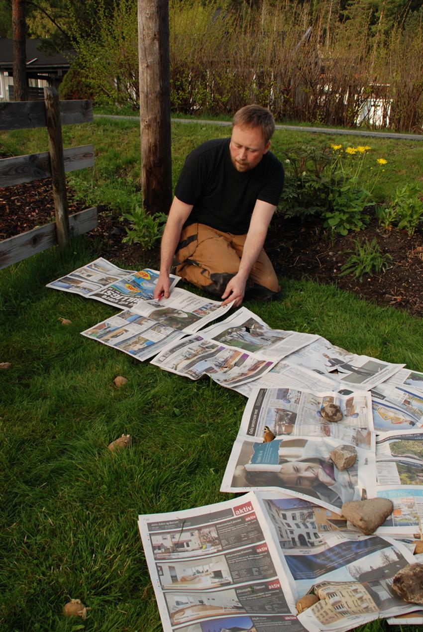 DEKKE Avisene gir mørke som svekker gress og ugress, mens potetene får lys gjennom små hull.