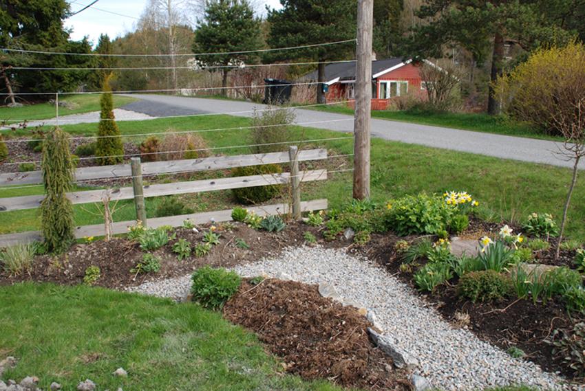 Mai.  Neste trinn var å blande inn organisk materiale, kompost og litt gjødsel. Så var det klart til å plante.