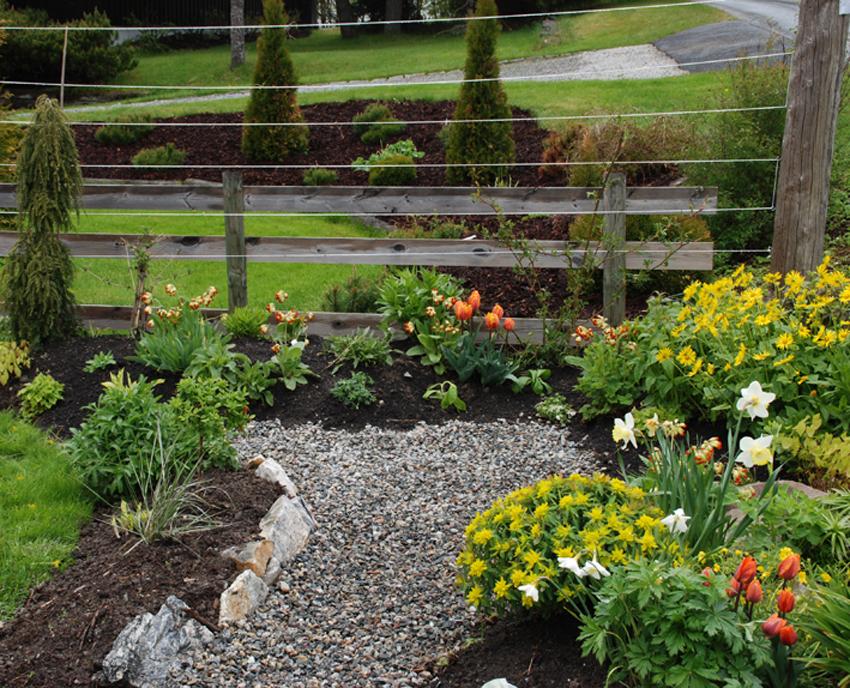 Juni.  Vi brukte mye kompost, for jorda var i utgangspunktet tung og veldig leirholdig. Den mørke jorda ga god vekst allerede første sesong.