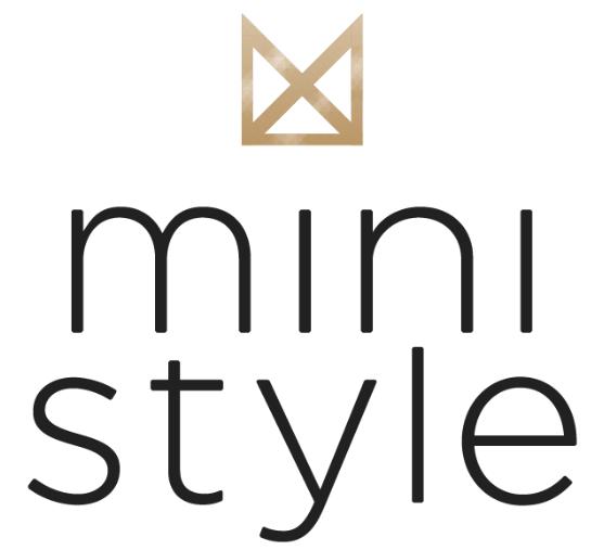 mini style - logo.png