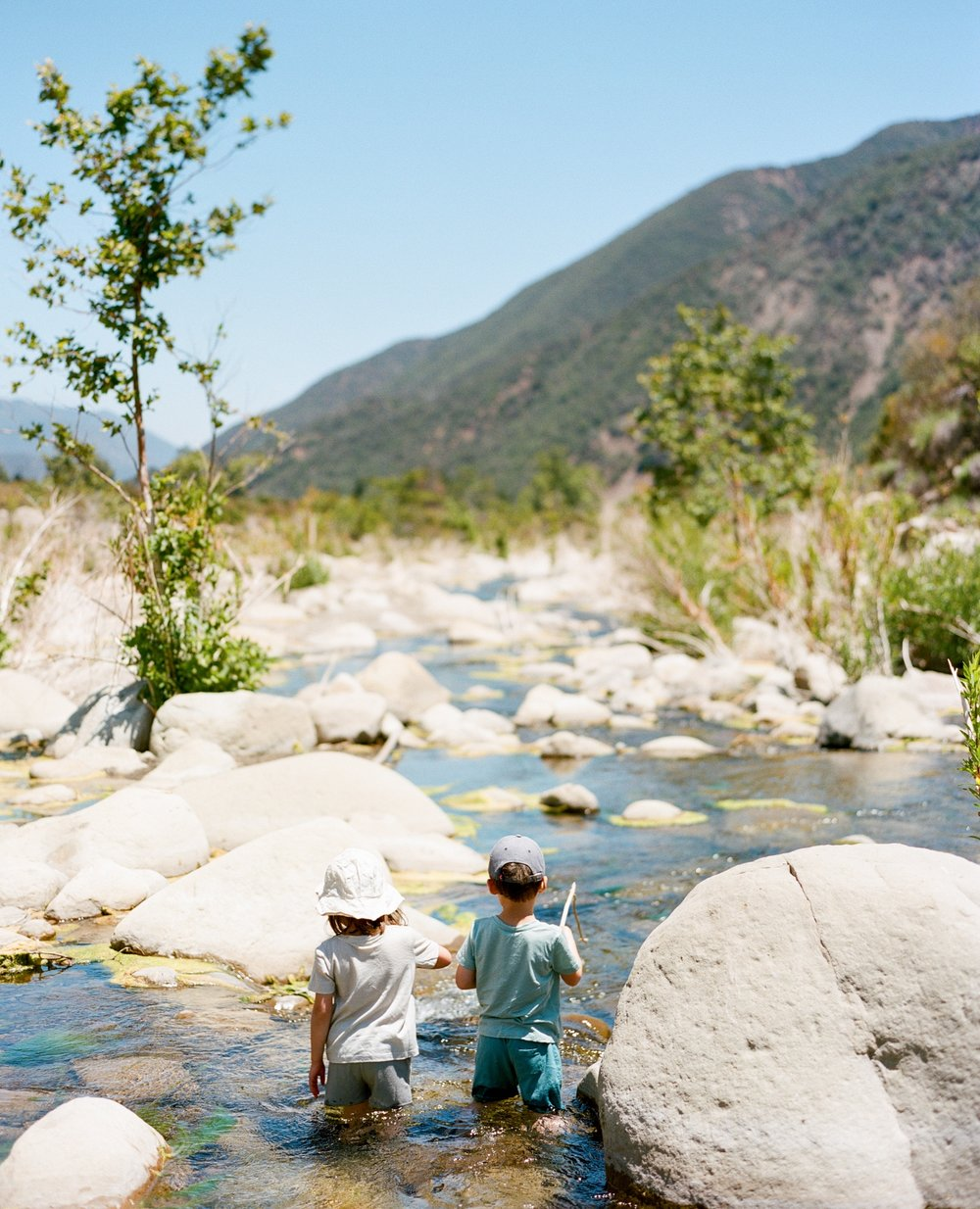 Two little explorers soaking up, and soaking in, nature. // pictured in  merino tees and shorts
