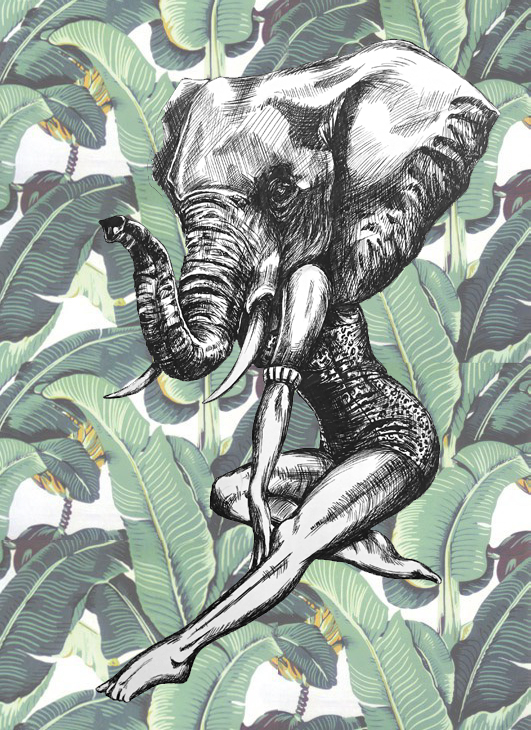 Elephantpaper.jpg