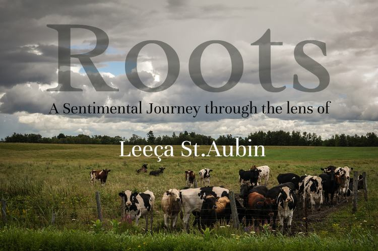 Roots: A Sentimental Journey Leeca St.Aubin *Solo Show July 2014