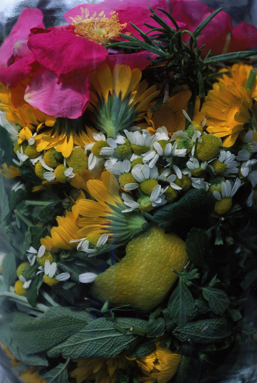 flower-jar.jpg