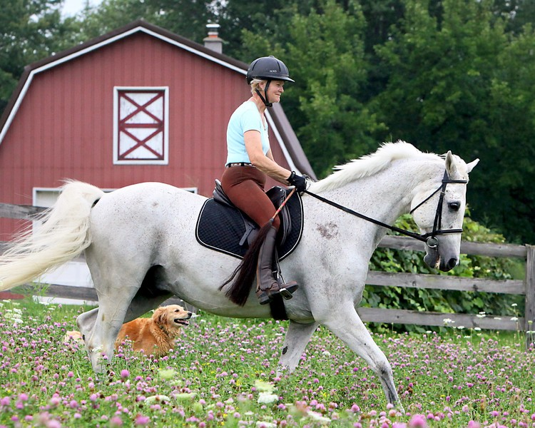 Saddle up for Roswell Trail Ride Fund Raiser — Chestnut Ridge and