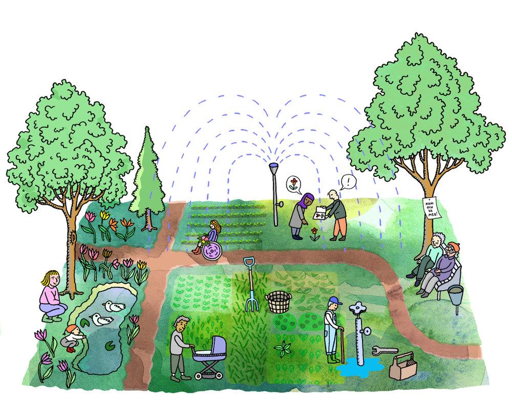 garden kopia.jpg
