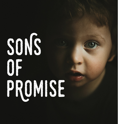 Sons of Promise  Throughout Scripture God makes promises. As we examine the circumstances surrounding five sons of promise, we can see His faithfulness in action. The births of Isaac, Samson, Samuel, John the Baptist, and Jesus are truly remarkable and worth as much study as we can devote to them.