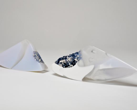 Segment Pair, Dr Jessamy Kelly. Photographed by David Williams.