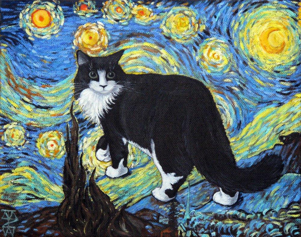 Starry+Starry+Cat.jpg