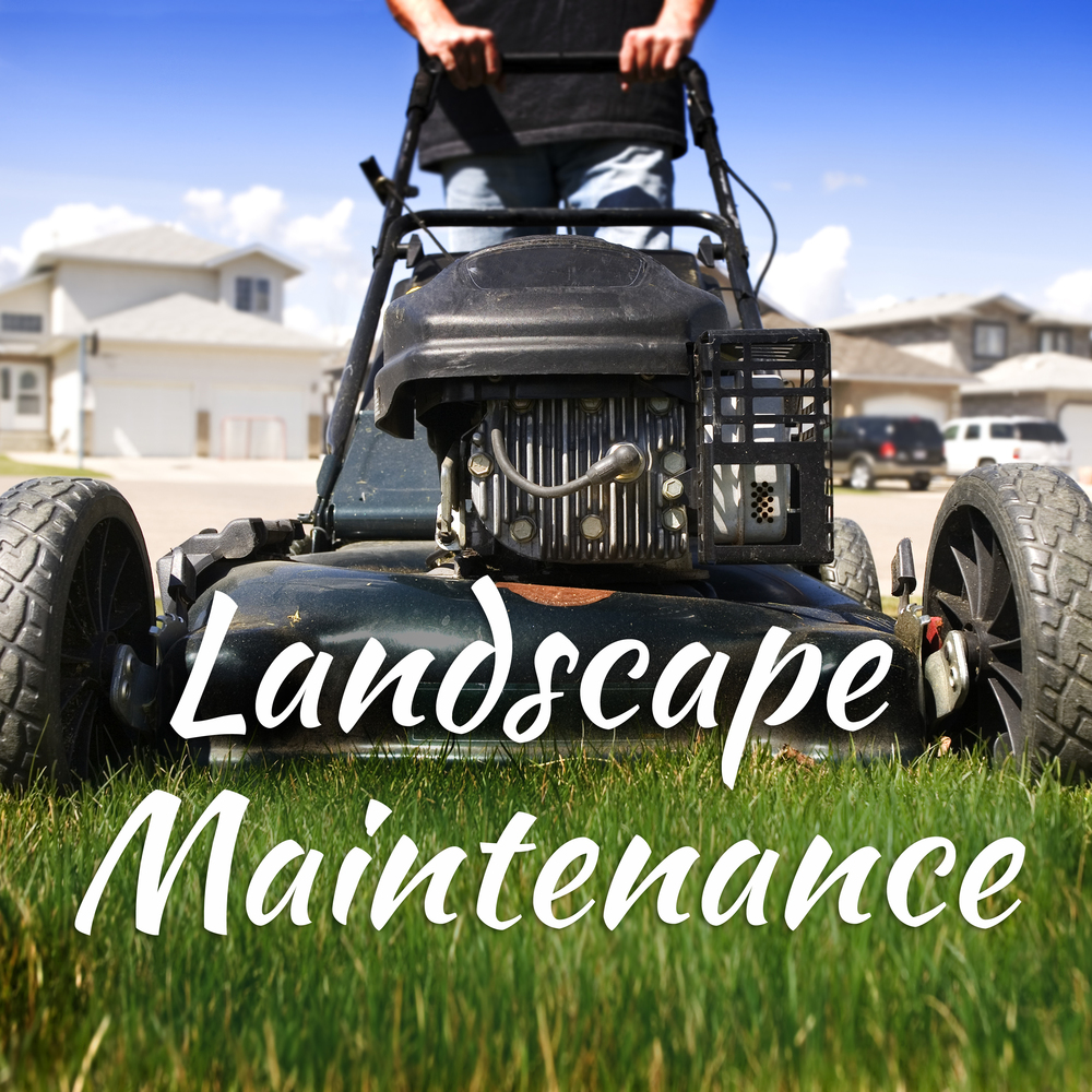 Need weekly mowingor edging? How about cleaning and planting?