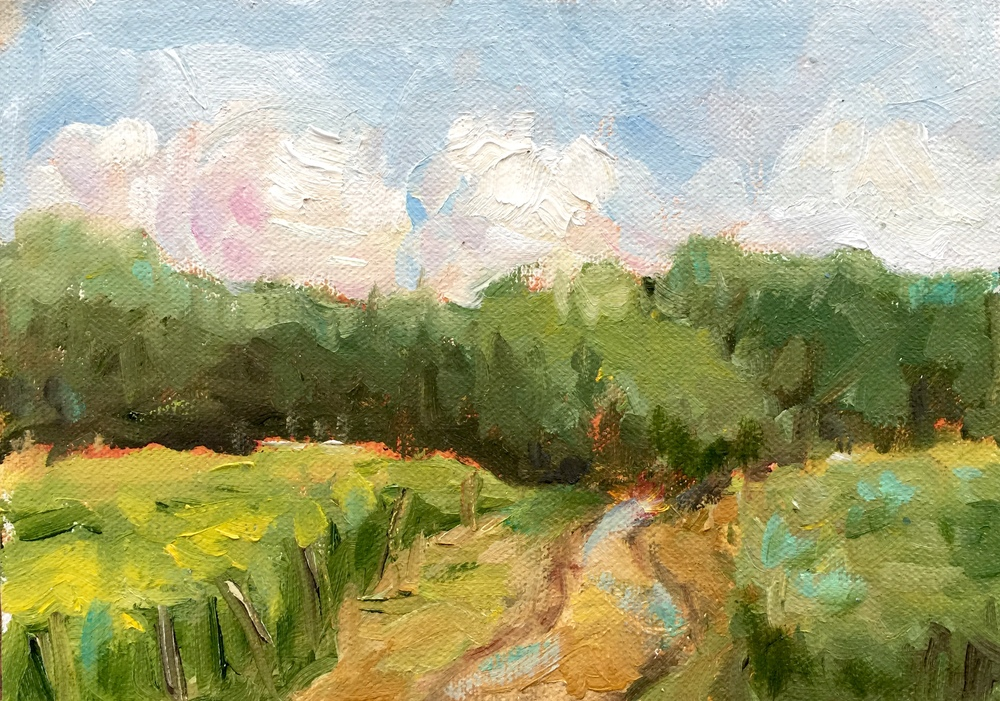 Johnson Vineyards  Oil on linen, 5x7 plein air.  Available