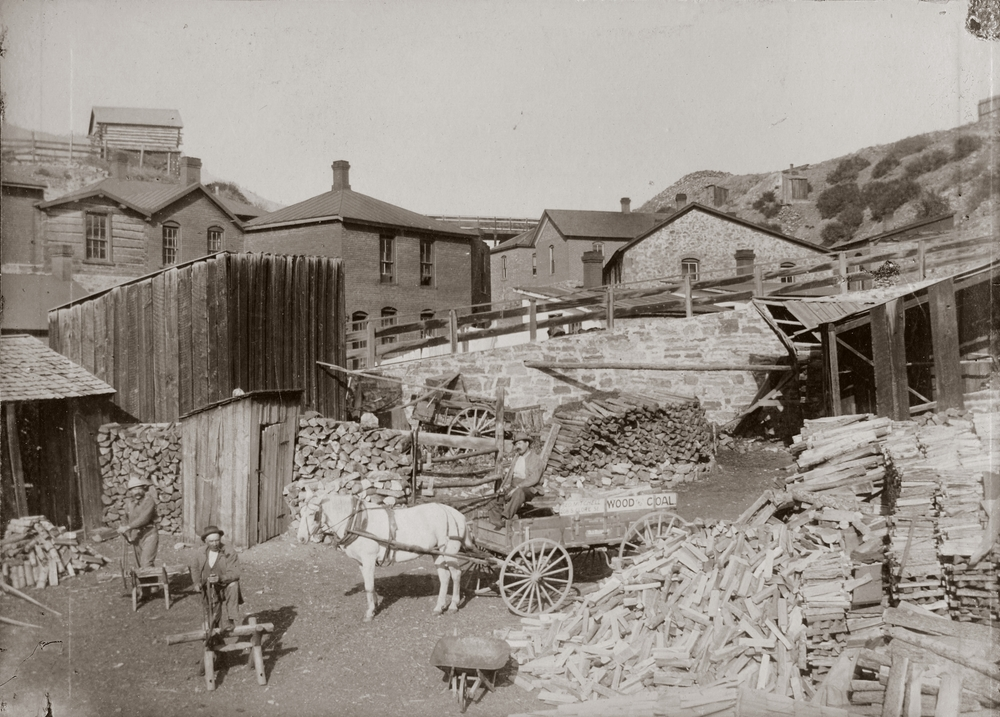 This 1890s view of Reeder's Alley shows the woodlot behind the Pioneer Cabin as well as the many small apartments that accommodated dozens of miners.