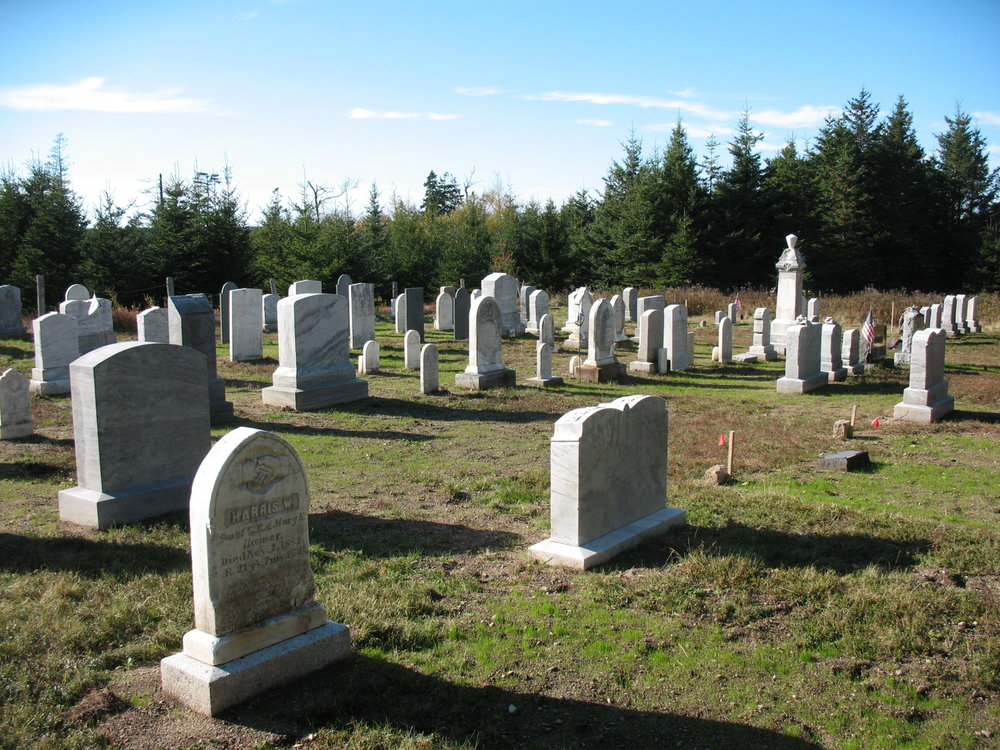 The Stanley Cemetery on Bulger Hill 2014 after conservation