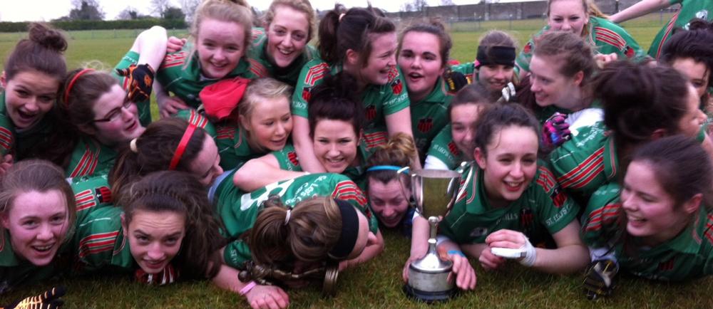 Junior-A-Leinster-Gaelic-Football-Champions.jpg