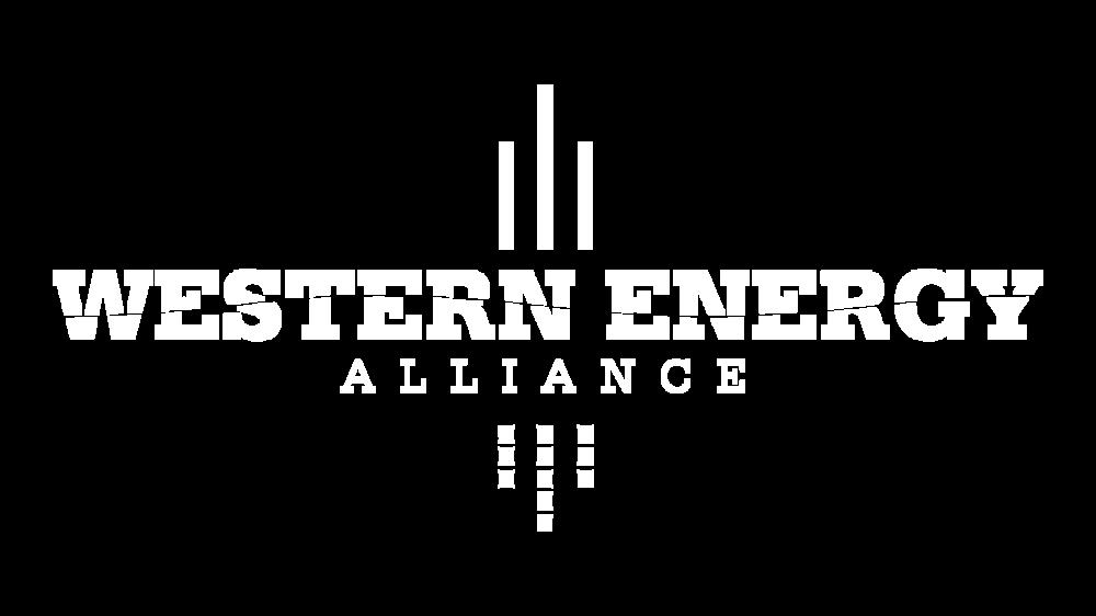 WEA-white-logo.png