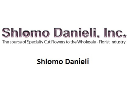 Shlomo Danieli Button Block.jpg