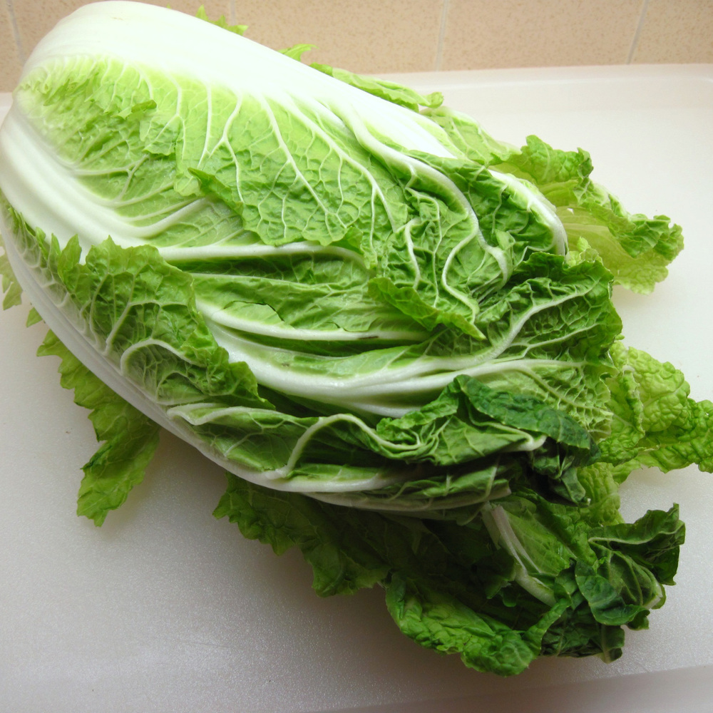 Napa cabbage  -  Napa cabbage, along with bok choy is one of the popular cabbage vegetables in mainland China. Napa's sweet, crunchy celery flavored leaves are one of the most sought after ingredients in oriental cuisine where on average, each person eats about 1 pound of fresh leafy vegetables per day.