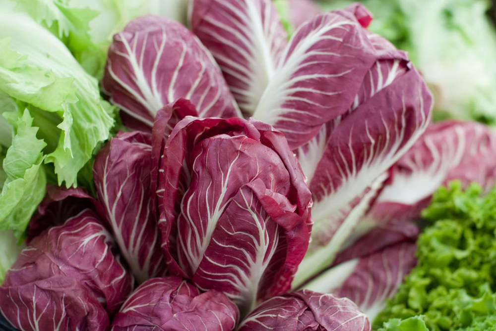 Radicchio  - an exotic Italian ingredient related to chicory. This distinctive plant grows in the winter time. It's rich maroon color is eye catching and has a peppery flavor that adds a textural bite to salads. It can also be grilled or roasted to take some of the bitterness out of the taste. Toss it with olive oil, garlic, and salt before roasting and it makes a colorful and delicious side dish.