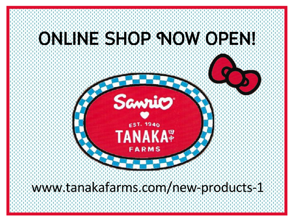 Online Store Open.png