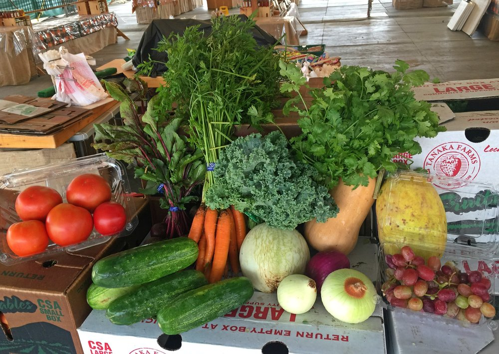 CSA Corner - Start 2018 with fresh Tanaka Farms fruits and vegetables! Subscribe to our Community Supported Agriculture (CSA) program and receive a weekly or bi-weekly box of seasonal produce. Pick up at the farm or at one of 40+locations from south OC to the South Bay. Three box sizes to choose from. Join our CSA family and support local farming and your good health today!                 Learn More