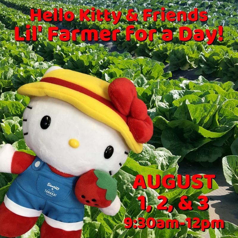 Hello Kiity & Friends