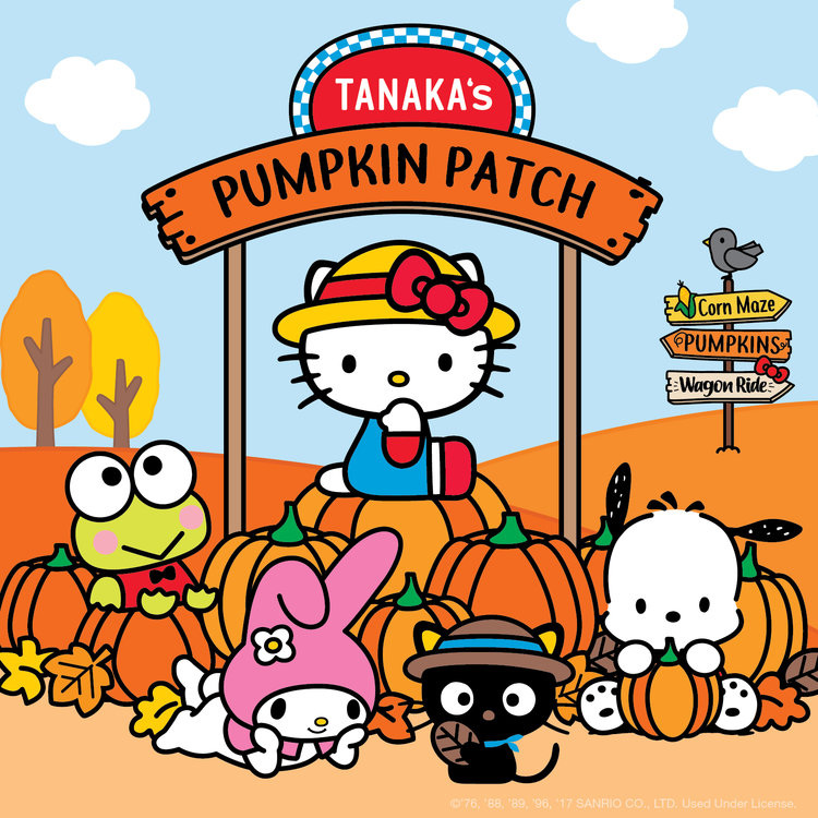 PumpkinPatch.jpg