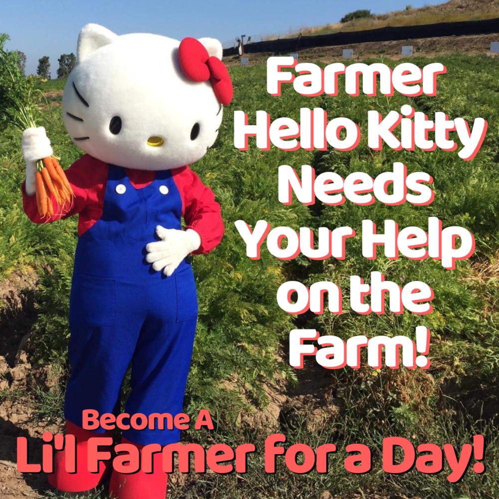 Farmer Hello Kitty Needs Your Help on the Farm!.png