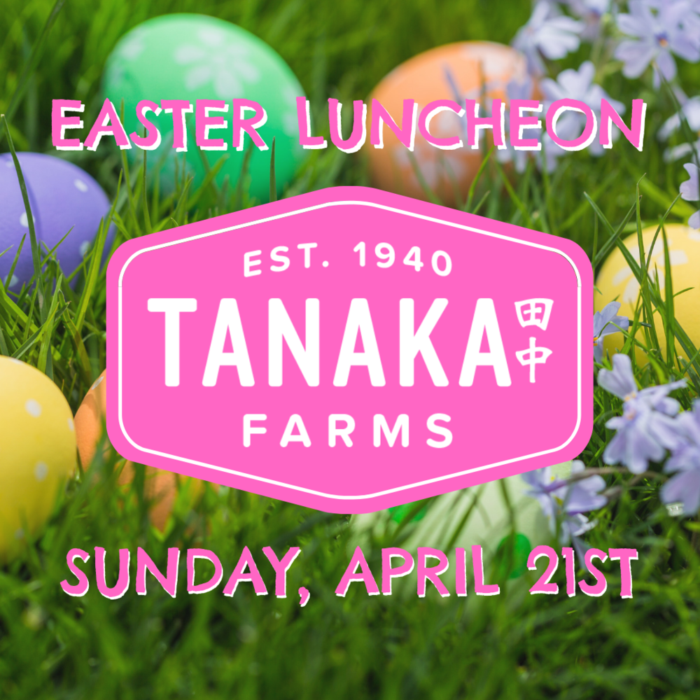 Insta EASTER LUNCHEON.png