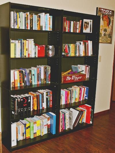 Bookshelves of books