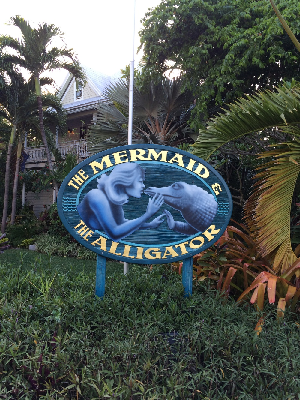 Mermaid And Alligator