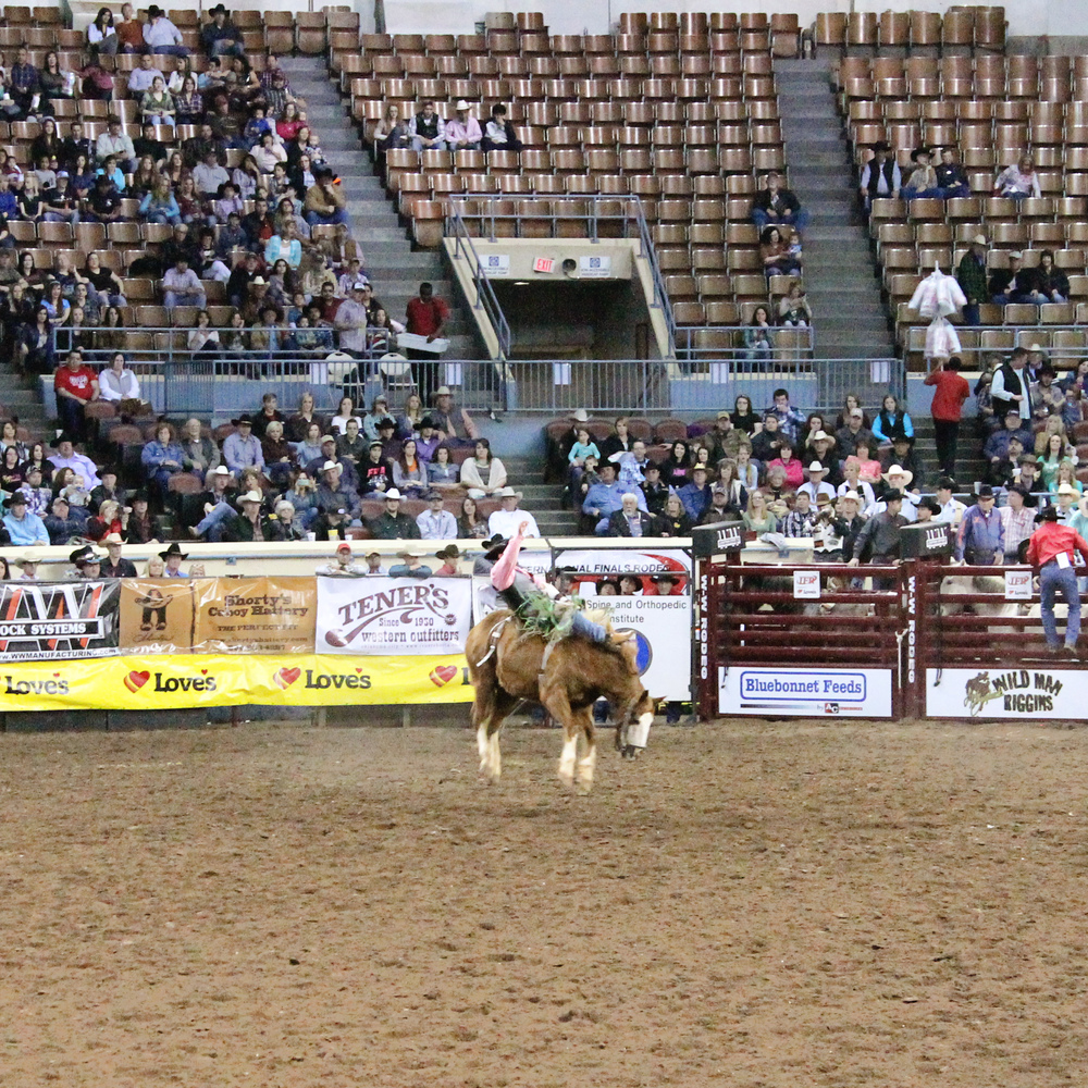 International Finals Rodeo 45 - Bronc Riding | Mrs Robbins Sparkles