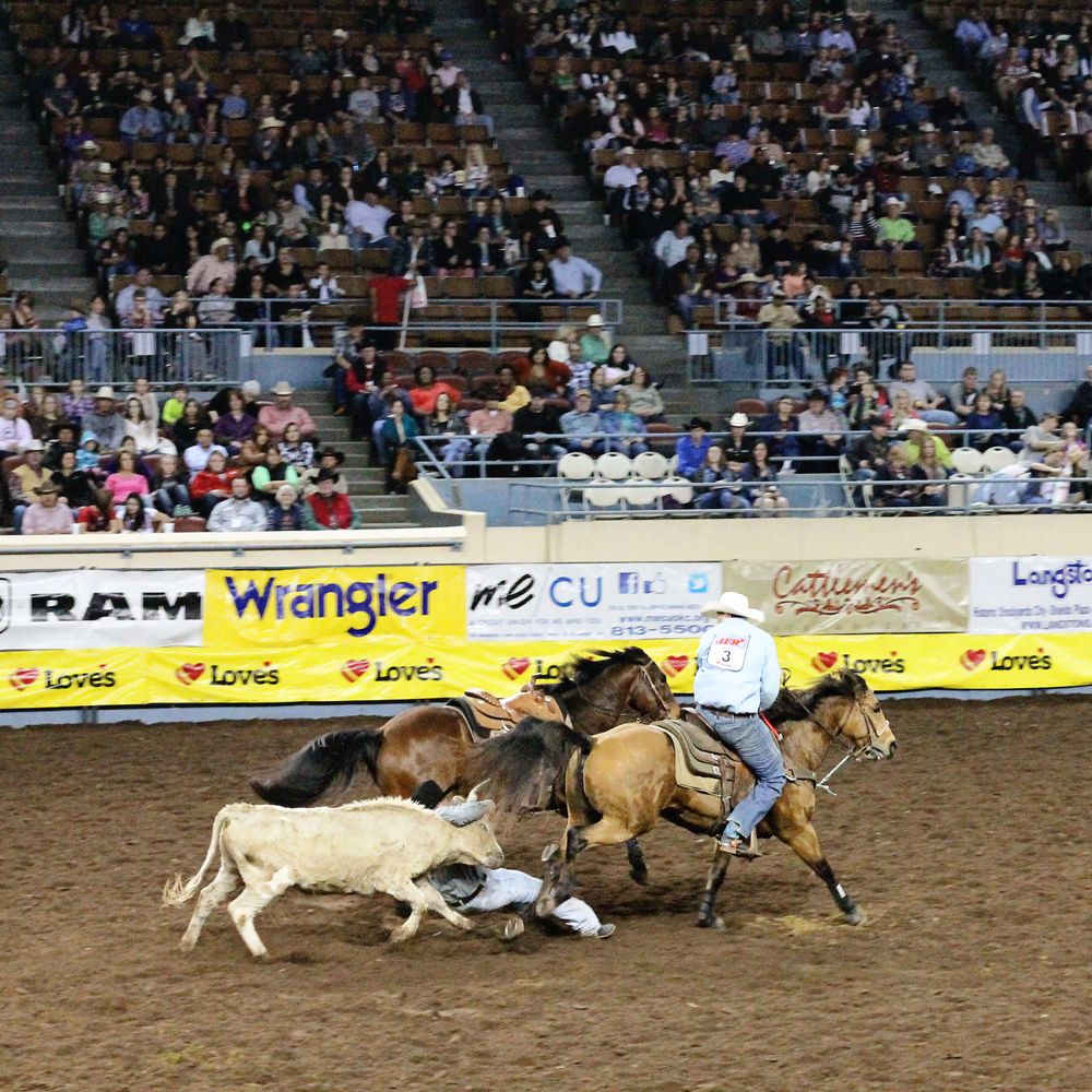 International Finals Rodeo 45 - Steer Wrestling