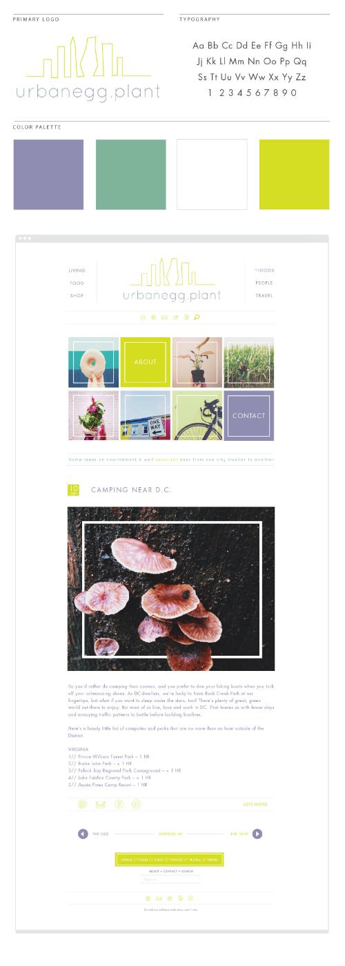 June Mango Design || MrsRobbinsSparkles.com