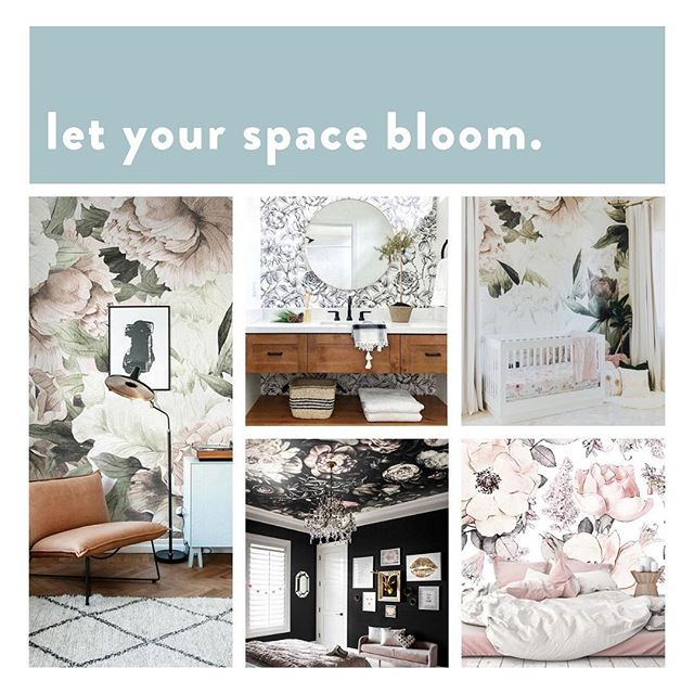 We're wild(flower) about this floral wallpaper trend! What room would you do this in?