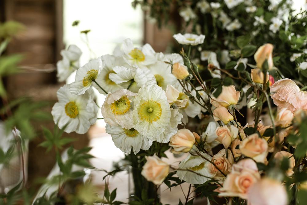 spring beauty day-3773.jpg