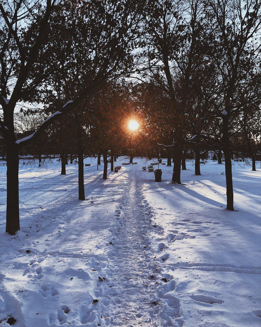 sun and snow.jpg
