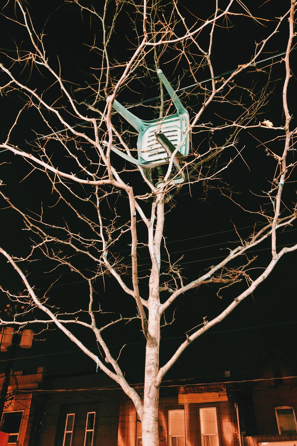 TREE_CHAIR.JPG