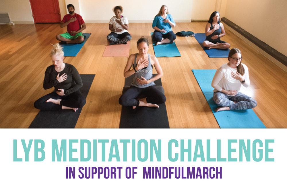 Yoga-Teacher-Newsletter---Header_V2.jpg
