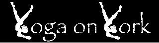 YOY Logo3-13 copy 2 (1).jpg
