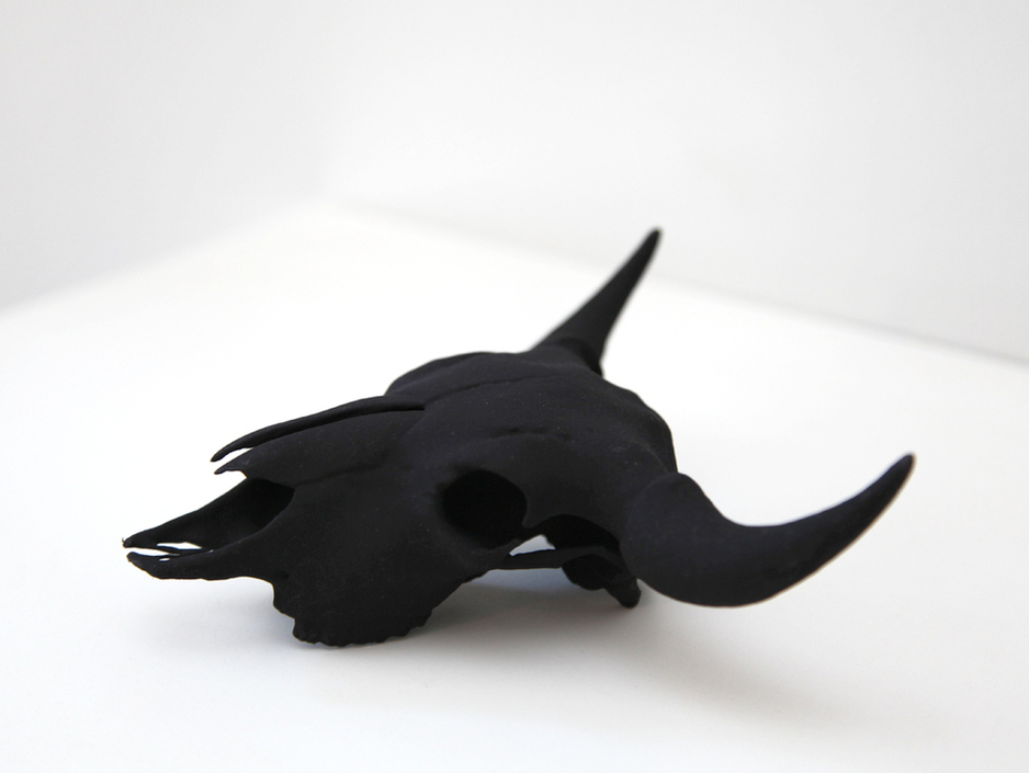 Death becomes her.    The  Buffalo Skull  by Parvez Taj
