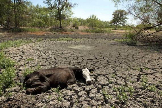 Toledo Water Crisis