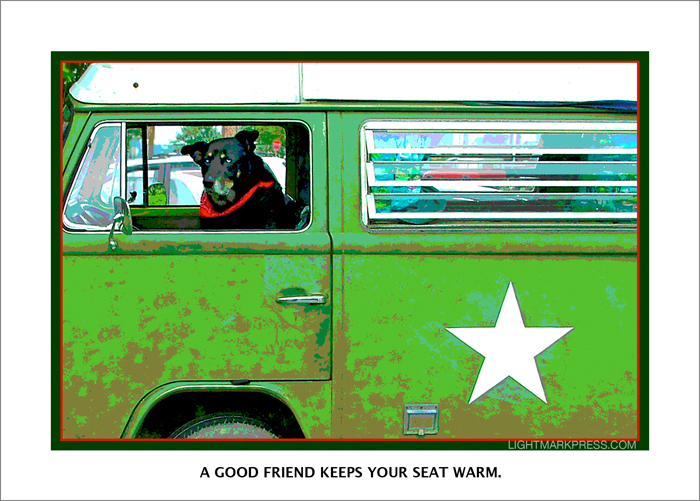 DEXTER, MEMORIALIZED. . . DON'T YOU LOVE HOW DOGS TAKE OVER THE DRIVER'S SEAT WHEN YOU LEAVE?